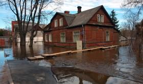 San Diego Flood Restoration